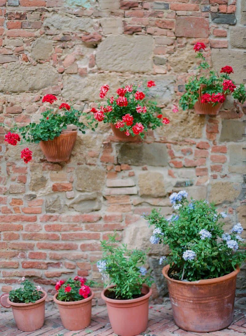 Tuscan Vibes