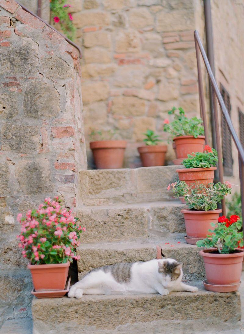 Tuscany Vibes
