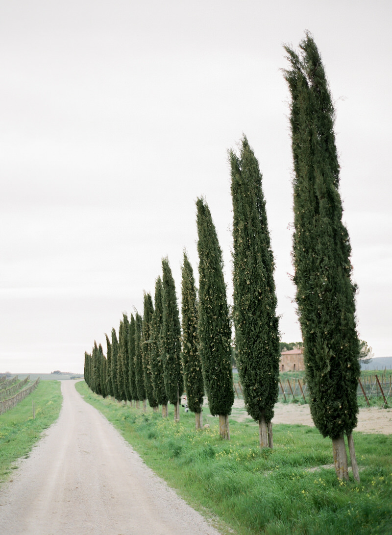 Destination Film Photographer Tuscany