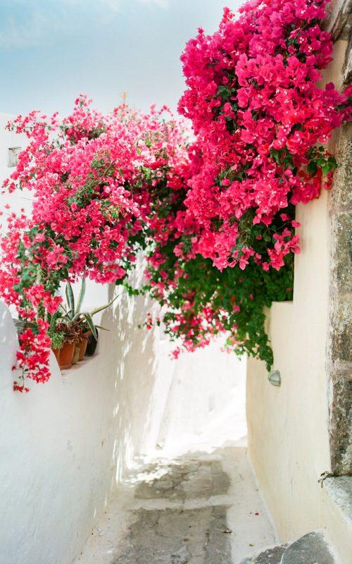 Santorini and its treasures